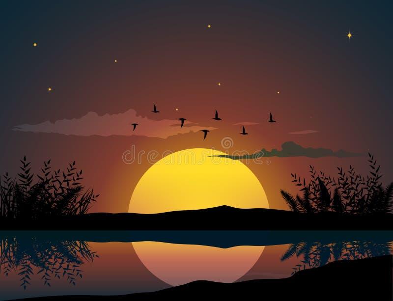Solnedgånglandskap med flygfåglar stock illustrationer
