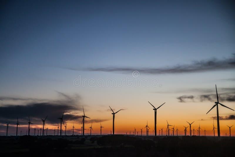 Solnedgånglandskap på fältet för vindgeneratorer royaltyfria bilder