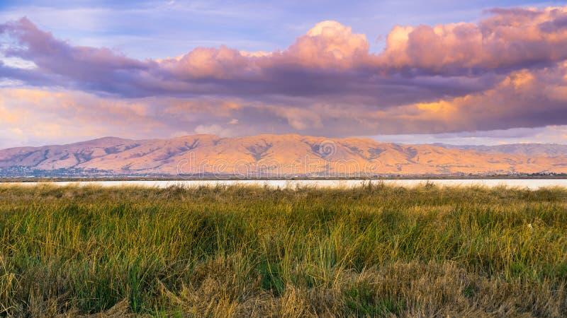 Solnedgånglandskapet av träsken av södra San Francisco Bay, beskickningmaximumet som täckas i den färgade solnedgången, fördunkla arkivfoto