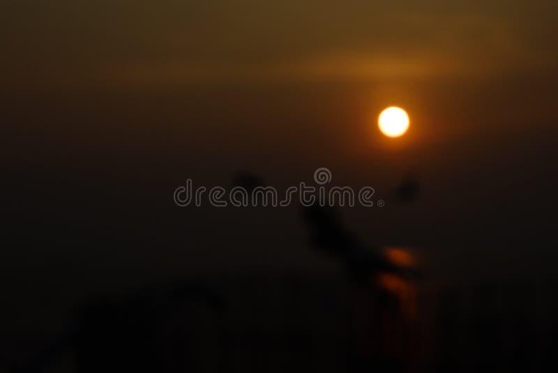 Solnedgångljuset på suddighet arkivfoto