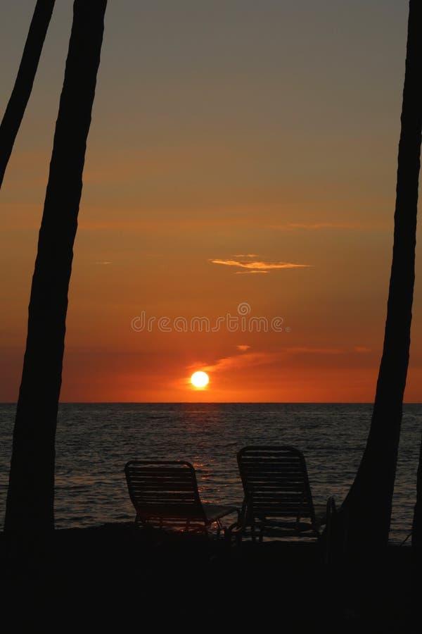 Solnedgångpalmträdstolar Hawaii arkivbilder