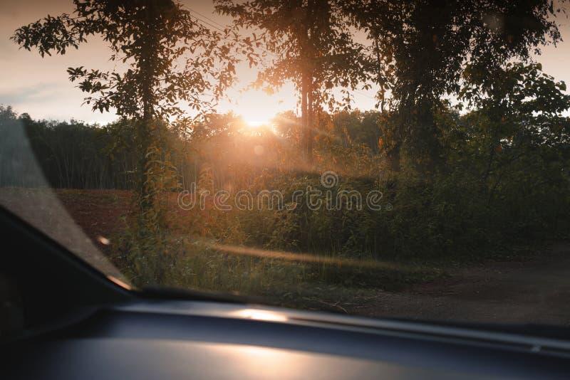 Solnedgångplats över skogsikten från bilen fotografering för bildbyråer