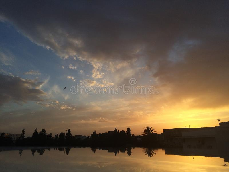 Solnedgångreflexion royaltyfri fotografi