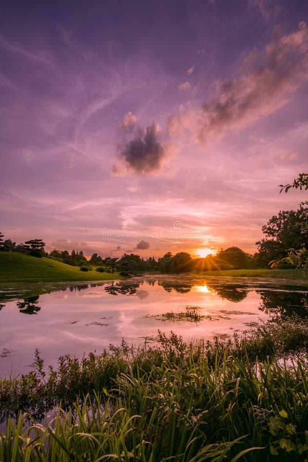 Solnedgångreflexion på sjön arkivbilder