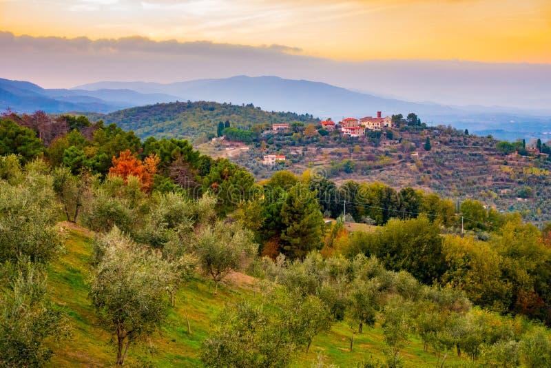 Solnedgångsikt över kullarna som täckas i olivträd runt om Cavriglia i hösten, Tuscany, Italien royaltyfria bilder