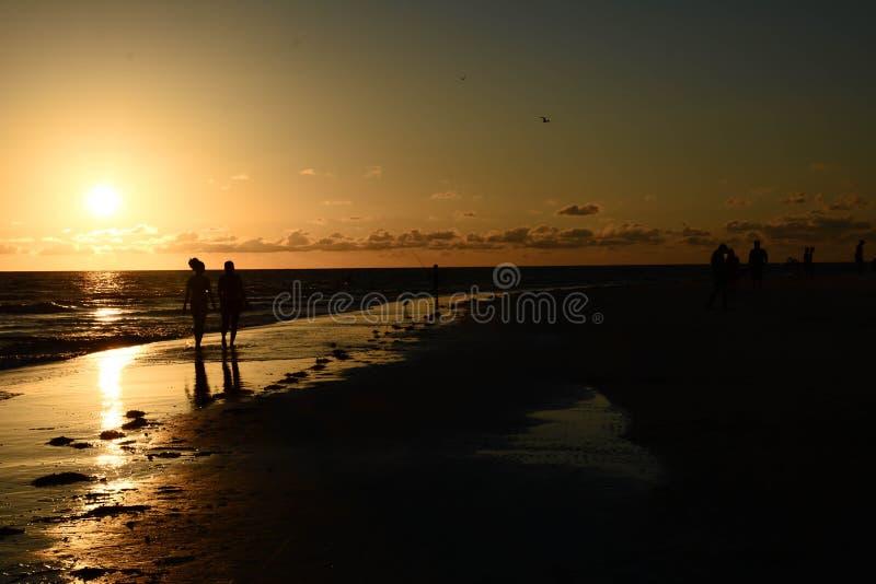 Solnedgångsikt royaltyfria bilder