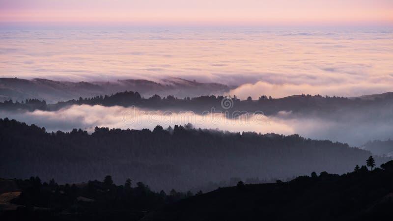 Solnedgångsikt av i lager kullar och dalar som täckas av ett hav av moln i Santa Cruz berg; San Francisco Bay område, Kalifornien royaltyfri fotografi
