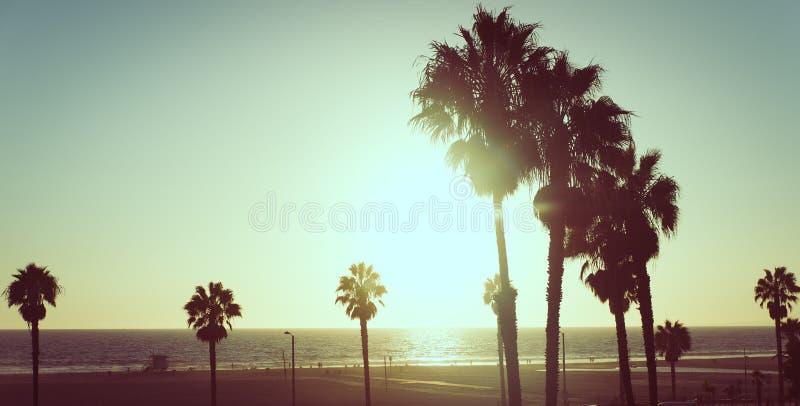 Solnedgångsikten med gömma i handflatan i Santa Monica, Kalifornien royaltyfri fotografi