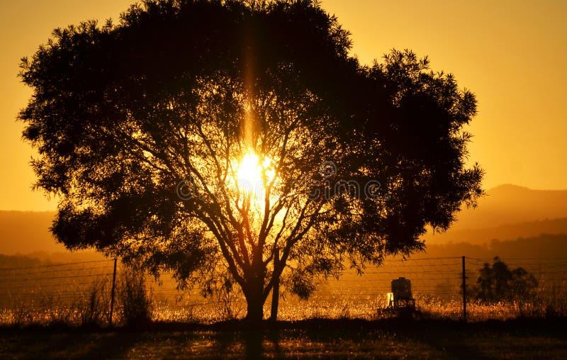 Solnedgångsolinställning bak berg och en trädbygd royaltyfria foton