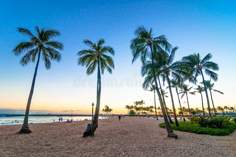 Solnedgångtid i den Waikiki stranden, Honolulu, Hawaii arkivfoto