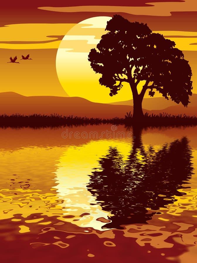 solnedgångtree stock illustrationer