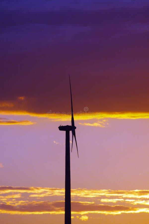 solnedgångturbinwind arkivfoto