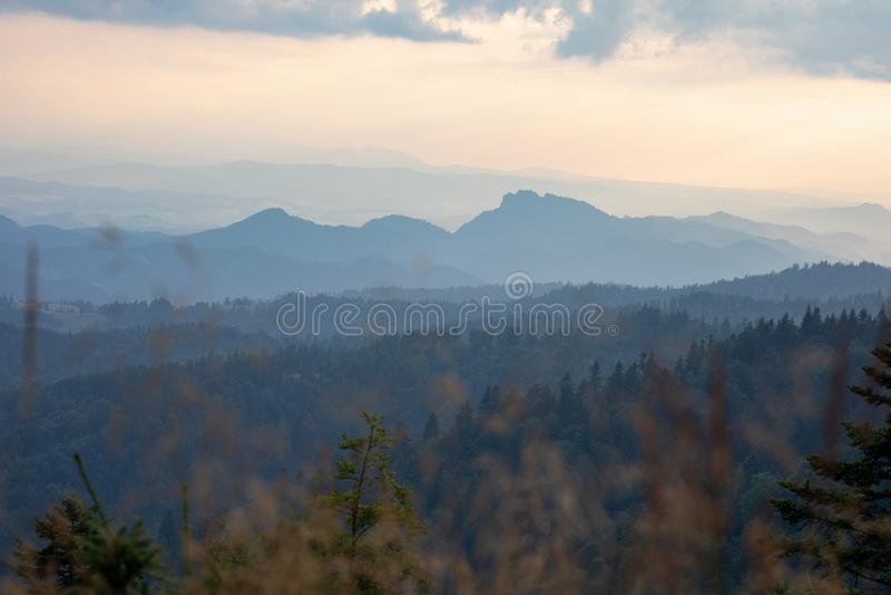 Solnedg?ng i bergen Skogar och vita moln i sky_5en arkivfoto