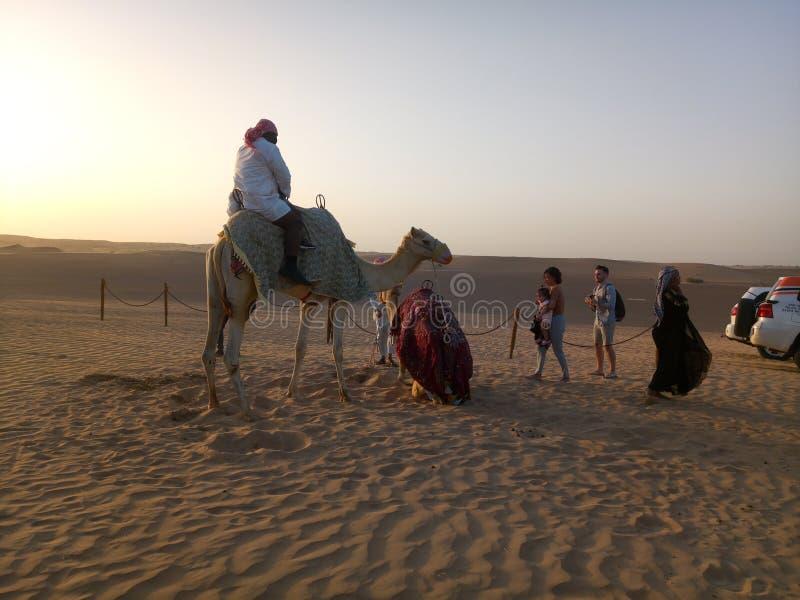 Solnedg?ng i Dubai, F?renade Arabemiraten arkivbild