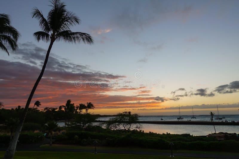 Solnedg?ng p? den stora ?n av Hawaii arkivbild