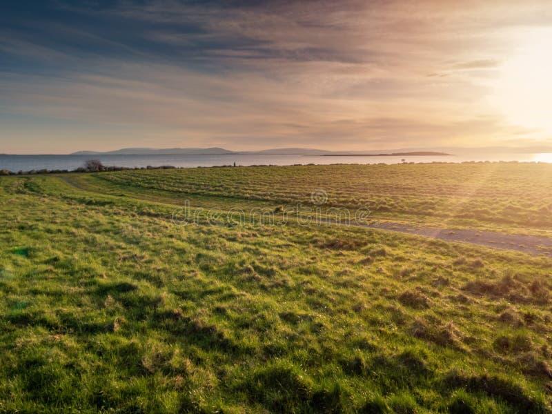 Solnedg?ng ?ver en ?ng Grönt gräs, mjuk aftonbelysning, solstrålar och signalljus, varmt glöd bl? molnig sky royaltyfria bilder