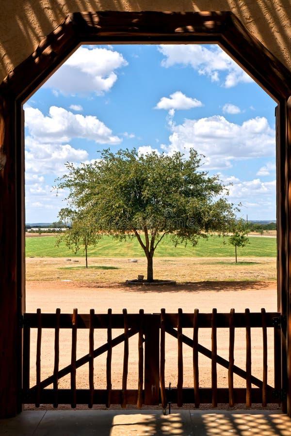 Solo árbol Enmarcado Por La Puerta Imagen de archivo - Imagen de ...