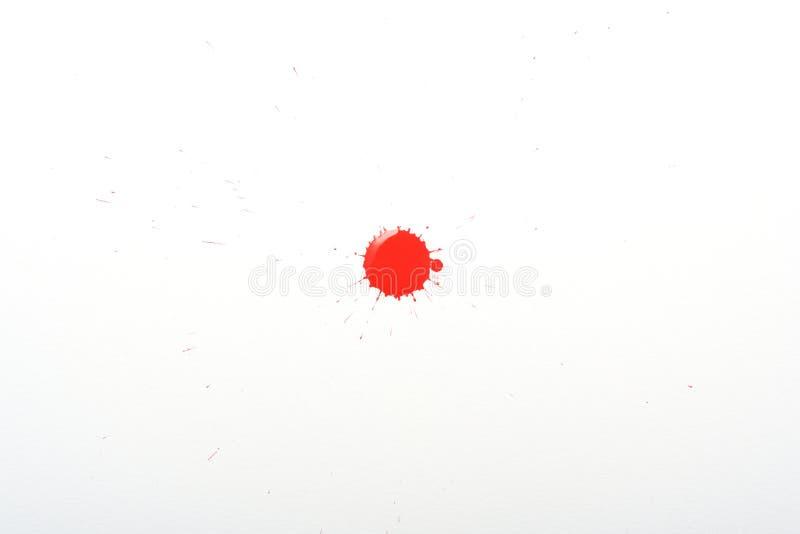 Solo chapoteo rojo brillante de la pintura aislado en el fondo blanco con la salpicadura fotos de archivo