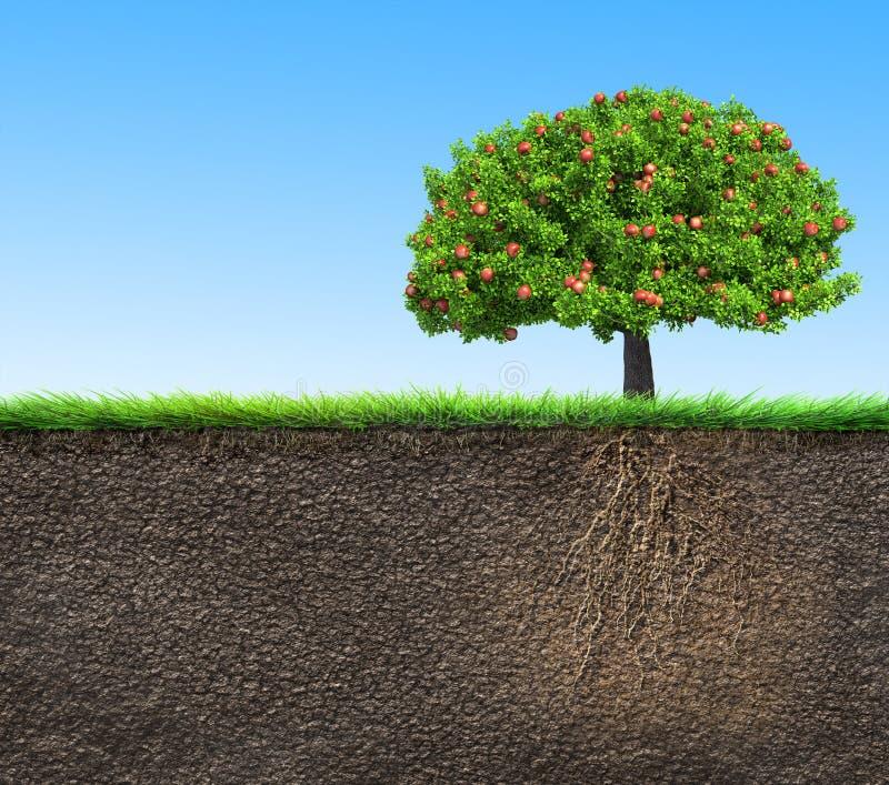 Solo com árvore e raizes ilustração royalty free