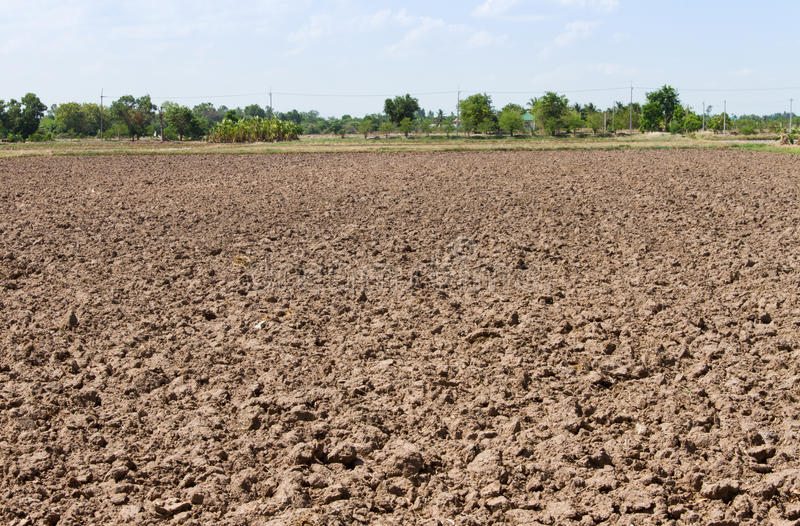 Solo de um campo agrícola foto de stock