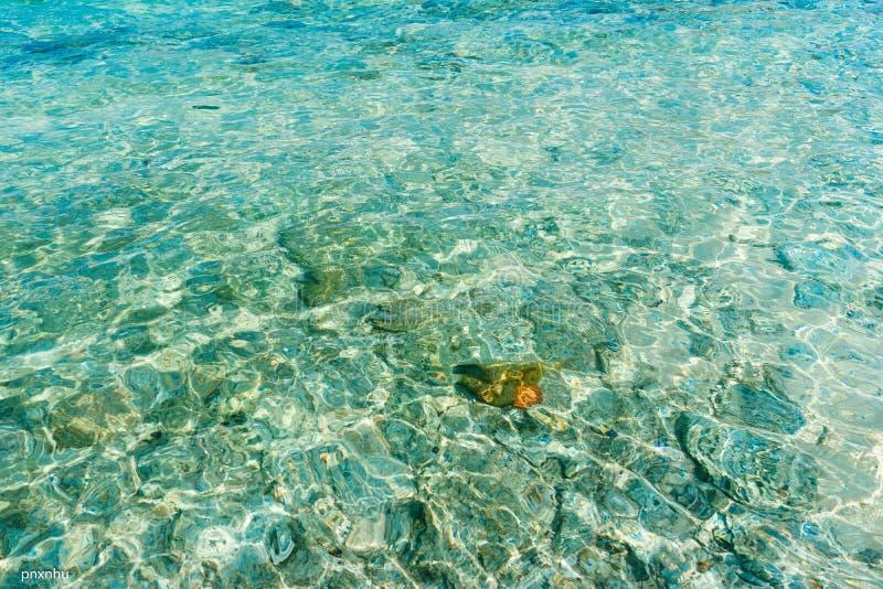 Solo en el mar de Lao Cau del Cu imagen de archivo libre de regalías