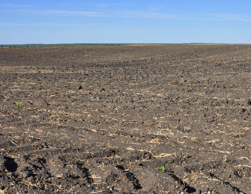 Solo fértil, arado de um campo agricultural imagens de stock royalty free