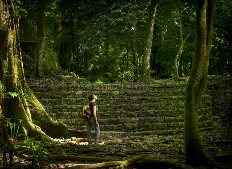 Solo Female Traveler In Forest stock photography