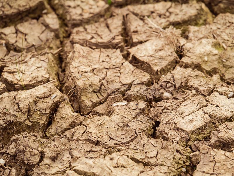 Solo marrom rachado após uma seca, conceito: ecologia, aquecimento global, desastre fotografia de stock royalty free