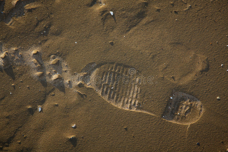 Solo Shoe Print in the Sand. Footprint of an explorer on the beach royalty free stock image