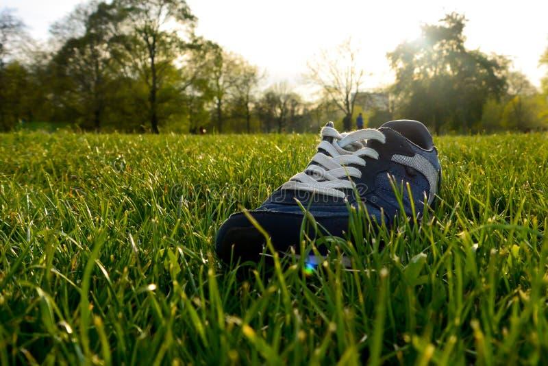 Solo sko fotografering för bildbyråer