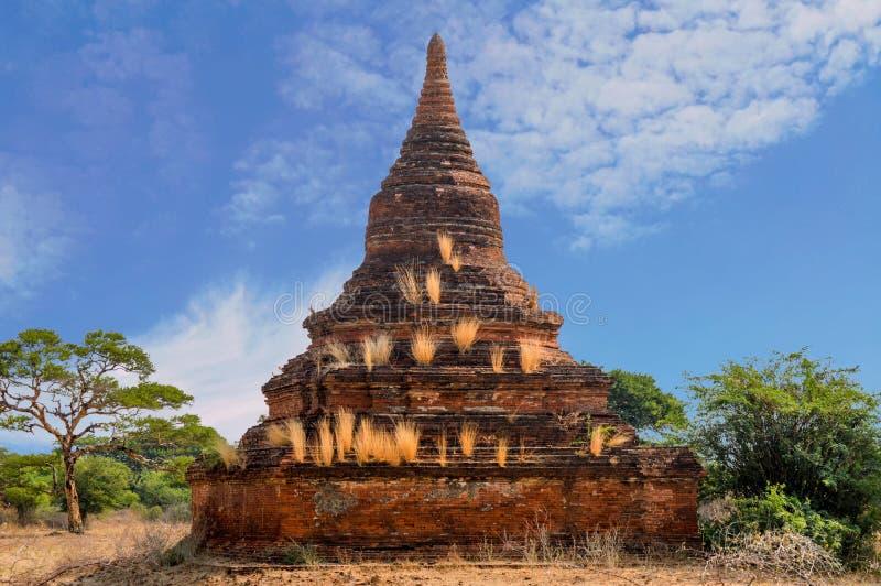 Solo Stupa met Gouden Gras dat weg alleen wordt behandeld stock foto's