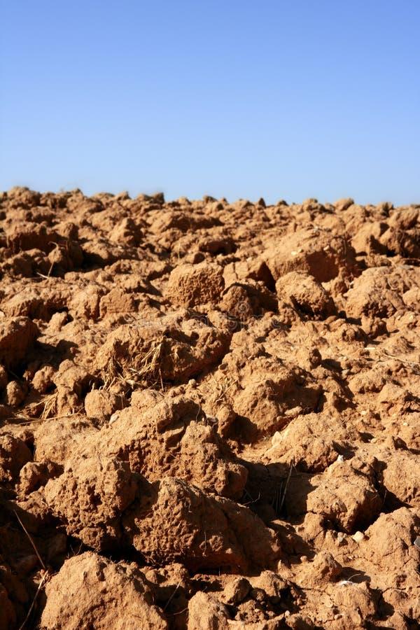 Solo textured da argila agricultura vermelha fotografia de stock