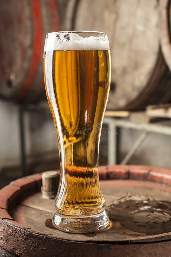 Solo vidrio de cerveza foto de archivo libre de regalías