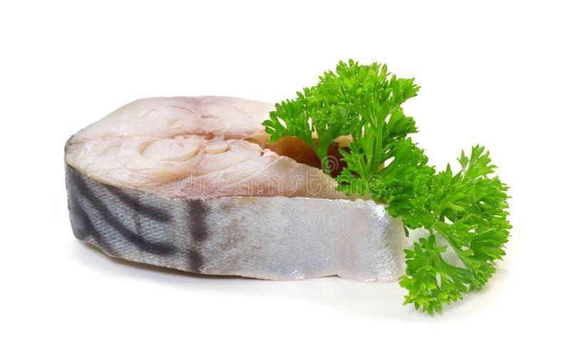 Solona makrela obrazy stock