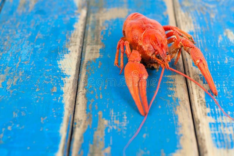 Solos cangrejos hervidos rojos enteros imagen de archivo libre de regalías