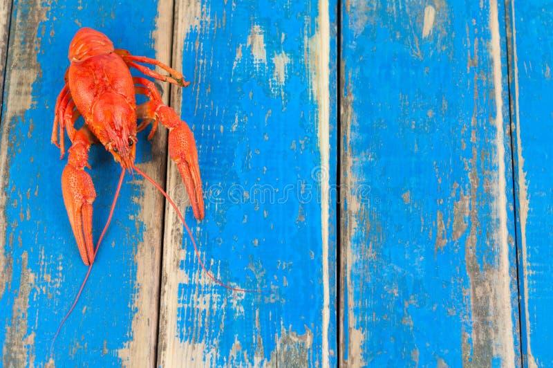Solos cangrejos hervidos rojos enteros imagenes de archivo
