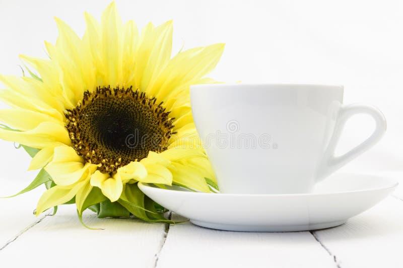 Solros bredvid en kaffekopp arkivbild