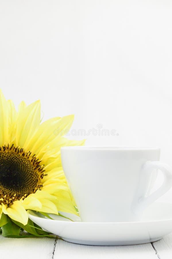 Solros bredvid kaffekoppen royaltyfri fotografi
