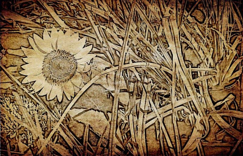 Solros på texturerad gammal pappers- bakgrund arkivbilder