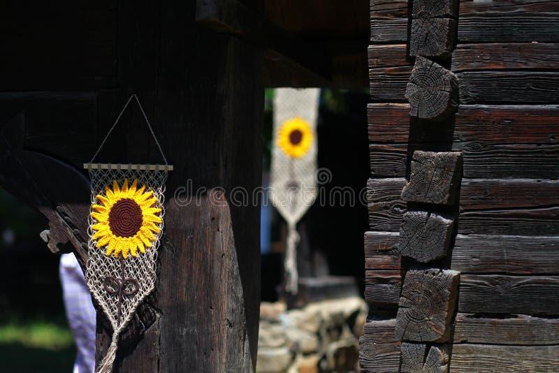 Solrosbevekelsegrunder arkivbild