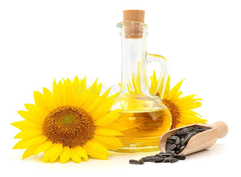 Solrosolja, fr? och blomma royaltyfri bild