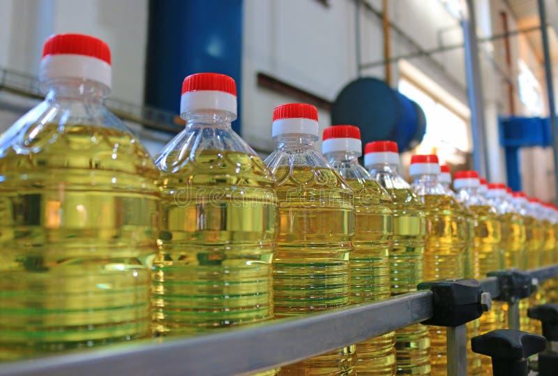 Solrosolja i en fabrik arkivbild