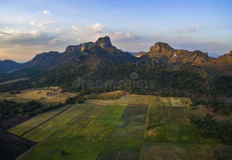 Solrosor sätter in och jordbruksområde med berget för limefruktstenen arkivbild