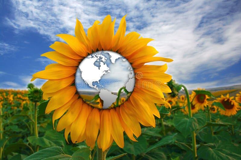 solrosvärld royaltyfri illustrationer