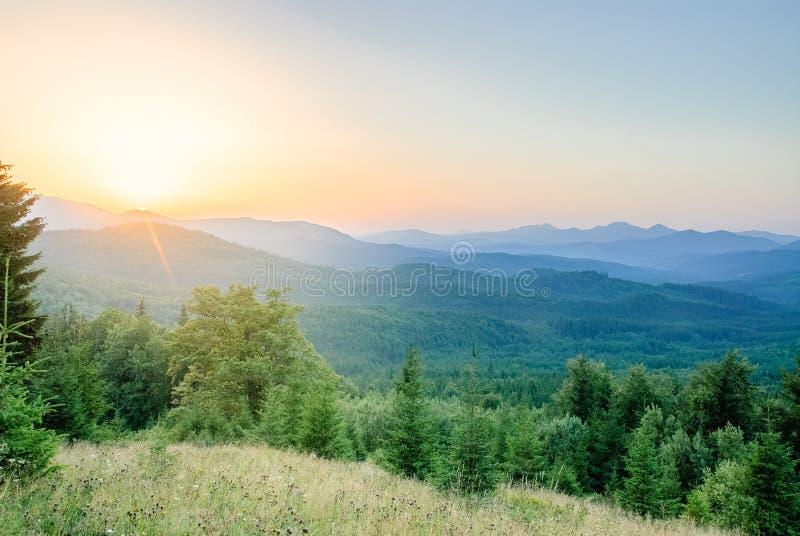 Solsignalljus på gryningen i ukrainska Carpathians arkivfoton