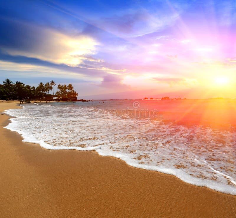 Solsken över havskust arkivfoto