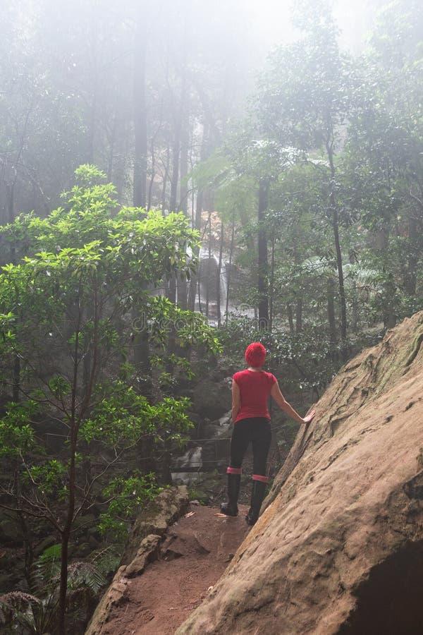 Solsken till och med mist och ljust regn in i gullyen av blåa berg arkivfoton