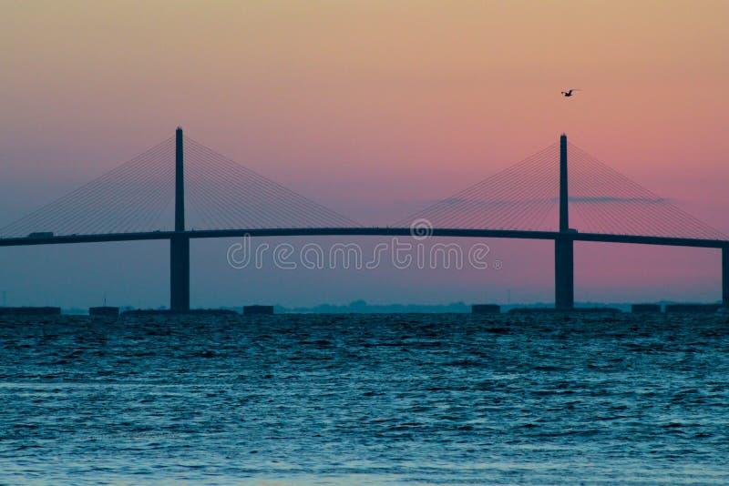 SolskenSkyway bro på soluppgången med fågeln royaltyfri foto