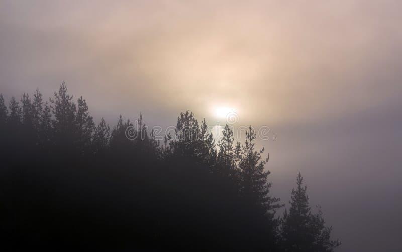 Solskivan kommer från bergsbacken och färgar skummet med magiska färger arkivfoton