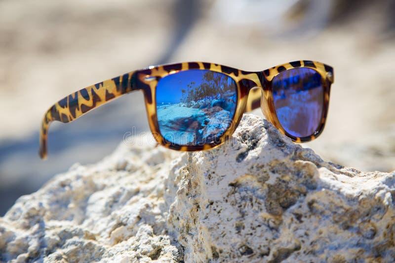 Solspegelexponeringsglas ligger på en sten I dem finns det en reflexion av stranden royaltyfri fotografi